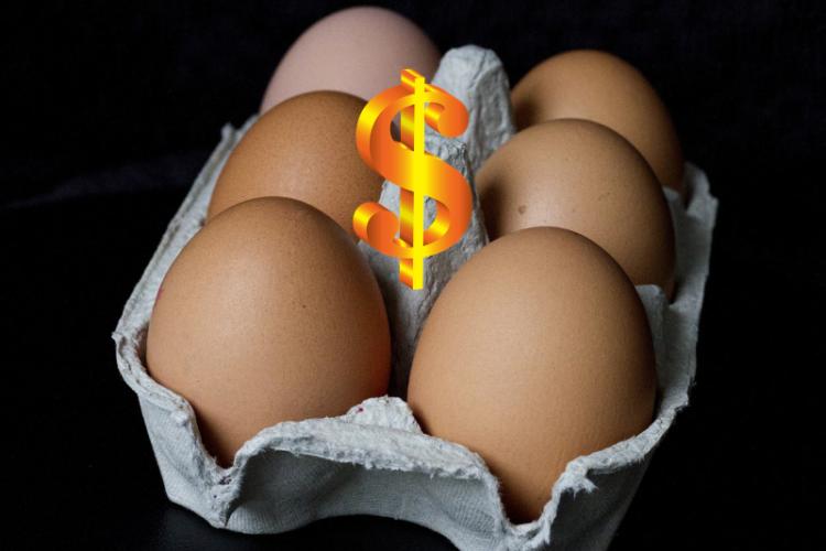 Цены на яйца