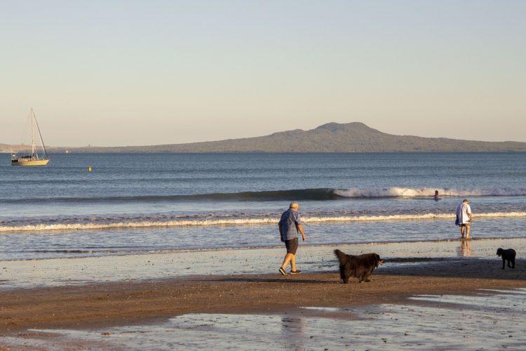 Новозеландский пенсионный рай
