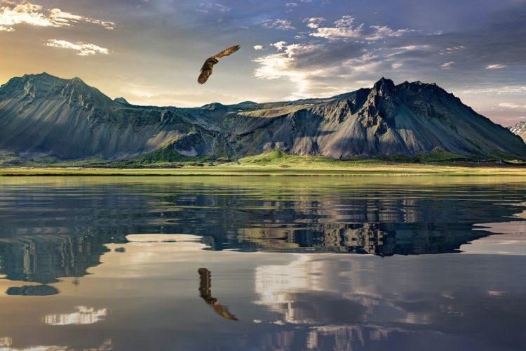 Новая Зеландия - природный и пенсионный рай