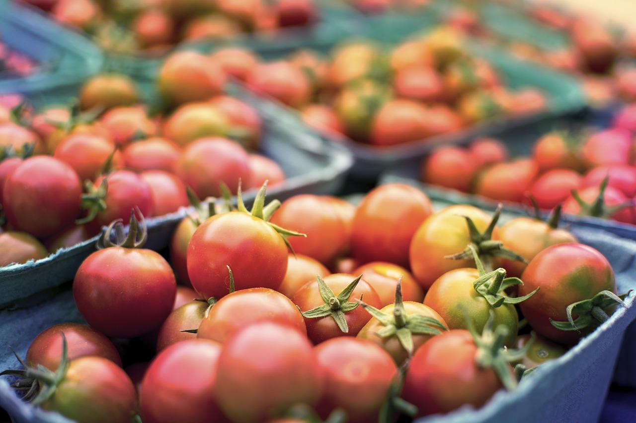 Органические помидоры в Канаде стоят 160-180 рублей за кг