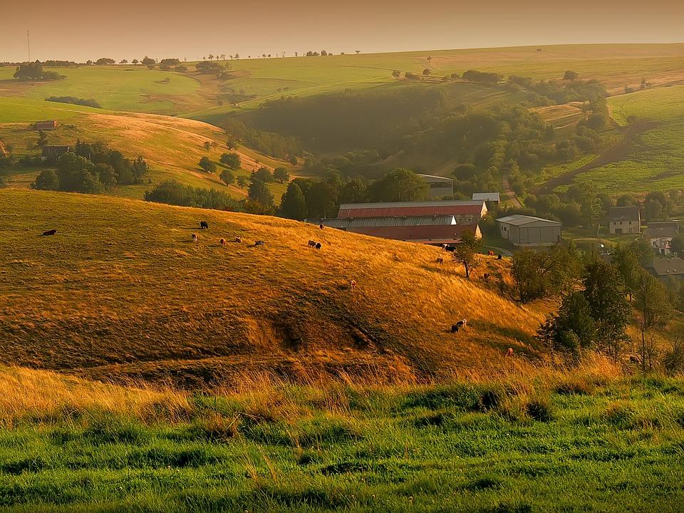 Типичный молдавский пейзаж