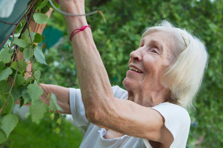 Пенсия и пенсионный возраст
